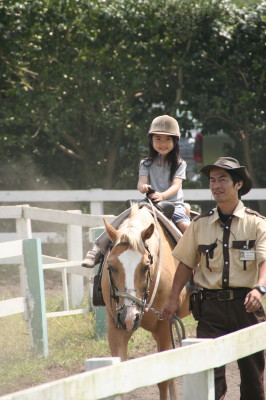 horse0001_3.JPG