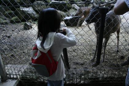 safari0032.JPG