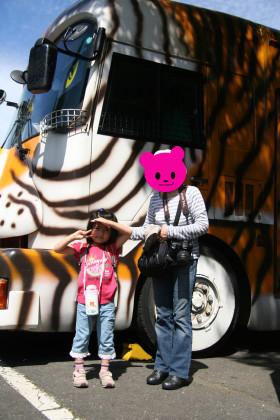 safaribus.jpg